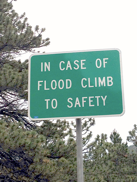 In Case of Flood Climb to Safety
